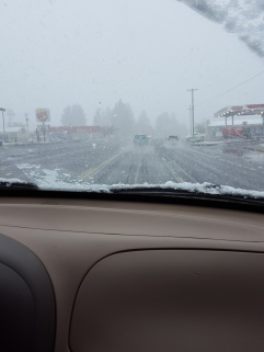 Freak snow storm
