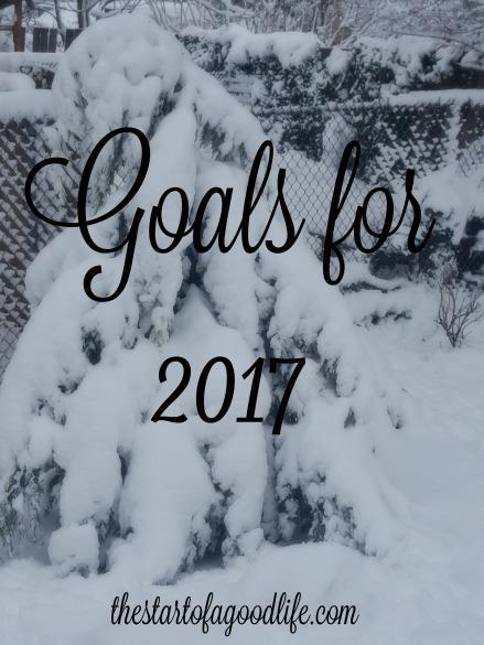 goalsfor2017