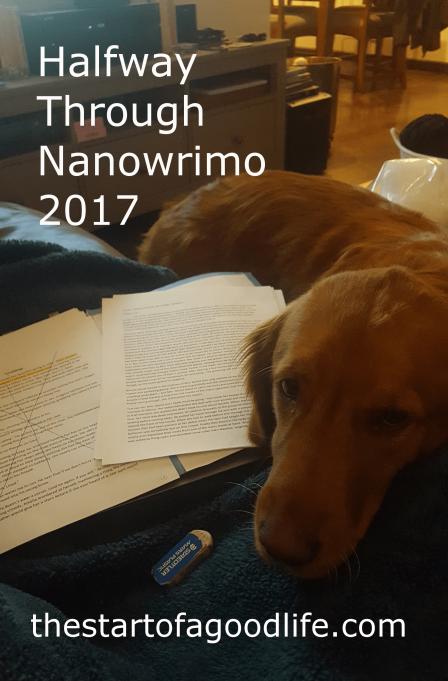 halfwaythroughnano2017