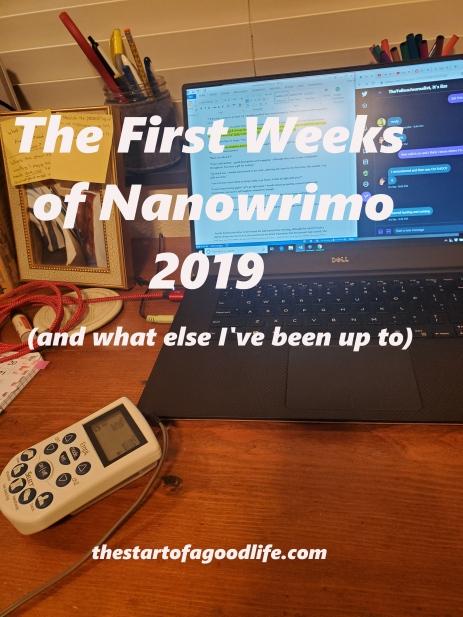 1stweeksofnano2019