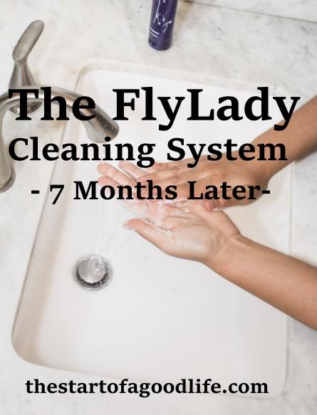 flyldycleaningsystem